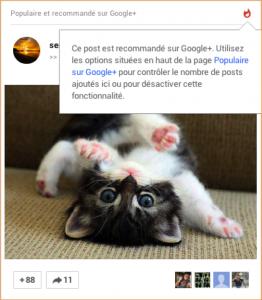Publications suggérées GooglePlus